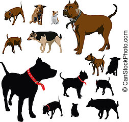 Colour vector illustrations and black silhouettes of dog with red pet collar