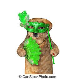 Dog in a green masquerade mask
