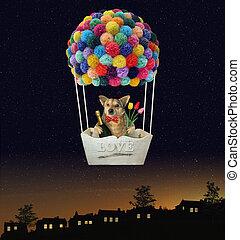 Dog in a hot air balloon 2
