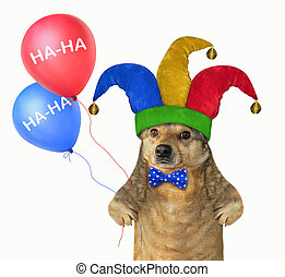 Dog in a jester hat with balloons