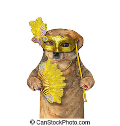 Dog in a yellow masquerade mask