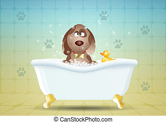 Dog in bathroom for grooming