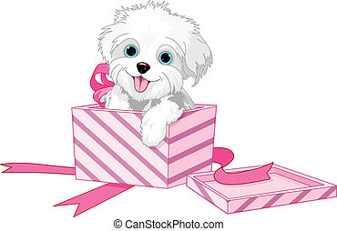 Cute puppy inside gift boxes