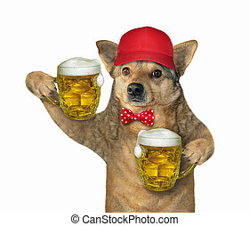 Dog in red cap holds two beer