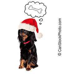 Dog in Santa Hat dreaming on Tasty Food on White Background