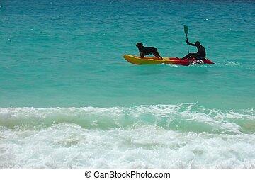 Dog in the boat