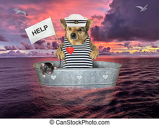 Dog in washtub on sea after shipwreck