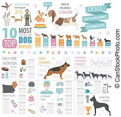 Dog info graphic template. Heatlh care, vet, nutrition, ...