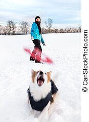 Dog is catching a flying frisbee, laughing woman in the back