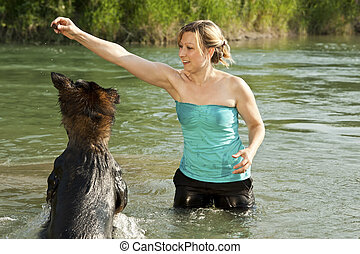 dog is jumping in the water