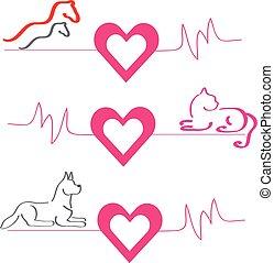dog, kat, achtergrond., hartjes, paarden, witte