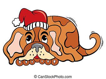 dog, kerstmistijd