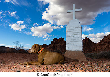 dog laying by white cross in the desert