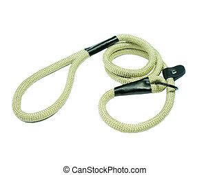 Dog leash for training on isolated white background.