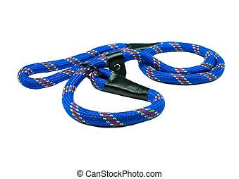Dog leash for training on isolated white