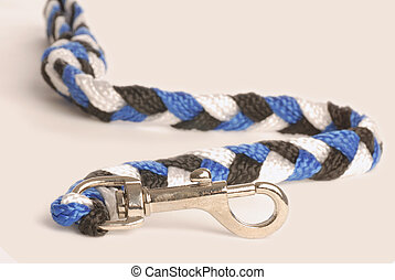 dog leash isolated on a white
