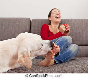 Dog licking the toes - Woman drinking coffee on the sofa ...