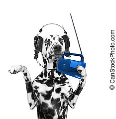 Dog listening to music and dancing
