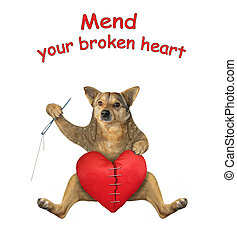 Dog mends broken heart 2