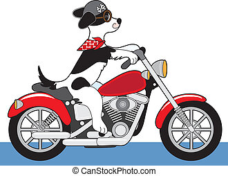 Dog Motorcycle - A dog is riding a red motorcycle. His ears,...