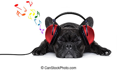 french bulldog dog listening to music with earphones or headphones, while relaxing or sleeping on the floor, isolated on white background