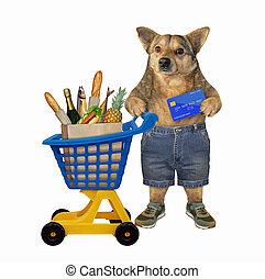 Dog near plastic trolley of food 2