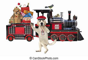 Dog near train with passenger 2