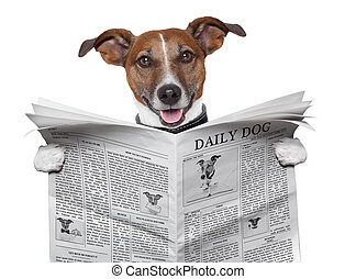 dog newspaper - dog reading and holding a  newspaper