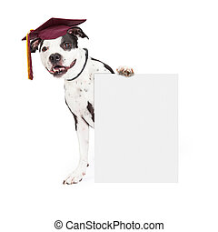 Dog Obedience School Graduate Holding Blank Sign