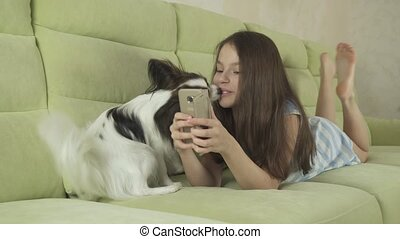 Dog Papillon persuades his mistress to get distracted from...