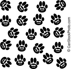 Dog paws on white background.