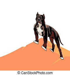 Dog pedigree (Pitbull) on a hill, cartoon on a white background.