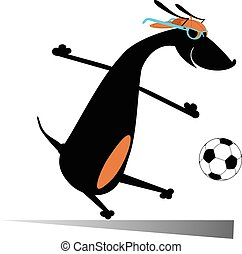 Dog playing football isolated