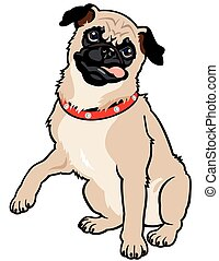 dog pug breed, sitting pose, front view, image isolated on white background