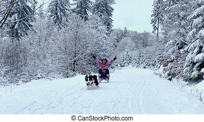 Dog pulling girl in sled