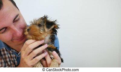 dog, puppy, het likken, de, man confronteren, liefde, vriendschap, video