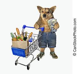 Dog pushing shopping cart 2