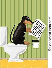 Dog reads news