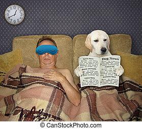Dog reads newspaper at night 2