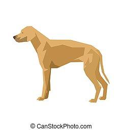 Dog, Rhodesian Ridgeback, isolated geometric vector illustration