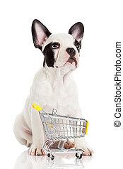 dog., rigolote, peu, achats, bouledogue, isolé, charrette, francais, white.