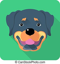 dog Rottweiler icon flat design