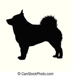 Dog Schipperke. Silhouette. Vector