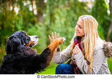 Dog shaking hands with paw to his woman
