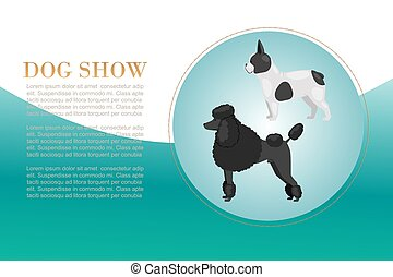 Dog show with poodel and bulldog breeds vector illustration poster. Big size dogs for home pets. Happy and friendly dogs show presented in cartoon style.