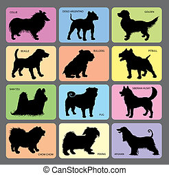 Dog in black shadow and its name with color card background. Easy to use.