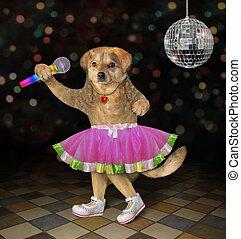 Dog singing in nightclub