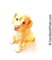 dog sitting on white background