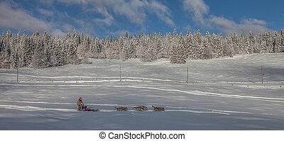 Dog sledding in Jura at La Givrine, St Cergue, Switzerland