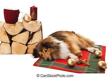 Dog sleeping with christmas ornaments